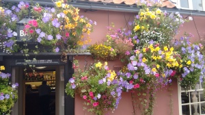 Hanging baskets at The Fox Inn